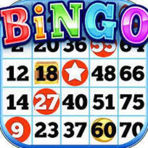 Sibs N Kids: Bingo