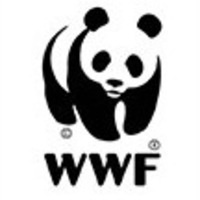 WWF's Greenhouse Sessions - The Future of Us