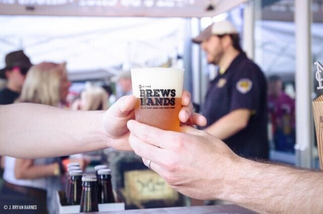 5th Annual WTMD Brews & Bands
