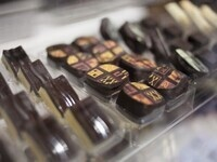 The Chocolate Expo at the Cradle of Aviation Museum