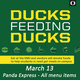 Ducks Feeding Ducks: Panda Express