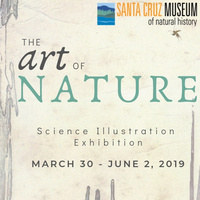 First Friday at the Santa Cruz Museum of Natural History