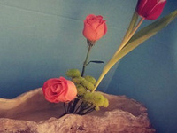 Ikebana: Friendship through Flowers