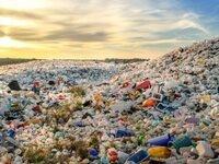The Secret Lives of Plastic