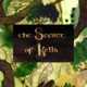 """The Secret of Kells"" Film Screening"