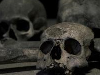 Science On Tap - Science is Stranger than Fiction: Death and the Afterlife