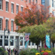 Fall 2019 Web Registration begins for grads, next year's seniorsBrown University Spring classes end