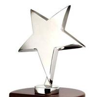Michael F. Bassman Honors Thesis Award