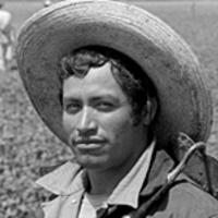 "Exhibit ""Bittersweet Harvest: The Bracero Program 1942-1964"""