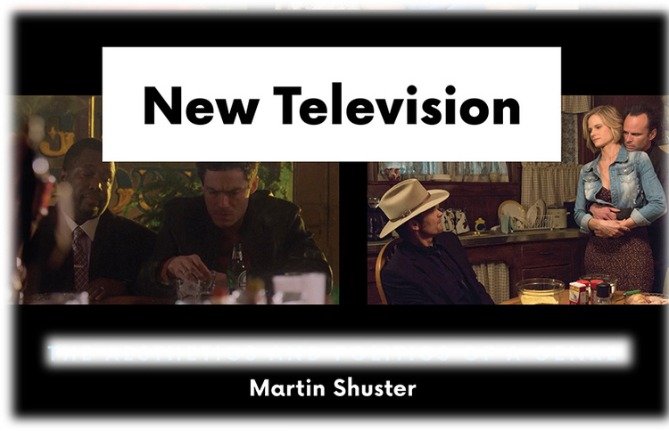 The New Television, Martin Shuster in conversation with Paul Kottman.