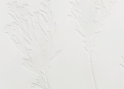 "Art Exhibit: ""Traces"" by Emma Ulen-Klees"