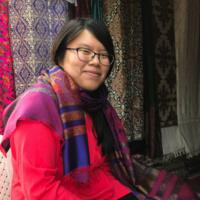 Health Care in India: In-Asia Grant Presentation by Julia Pindaro '20