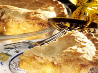 Panel and Pie: Life After Graduation- Adulting 101: What's Next?