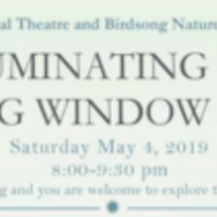 Illuminating Site: Birdsong Window Gardens
