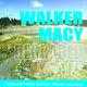 Overlook   Difficult Landscapes/Walker Macy/Degraded Sites
