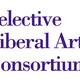 SLAC: Virtual Career Fair